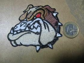 Bulldog nažehľovacia nášivka vyšívaná (možnosť nažehliť alebo našiť na odev)